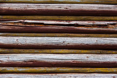 Wooden logs wall Stock Images