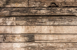 Wooden logs wall Stock Image