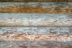 Wooden logs wall Royalty Free Stock Image