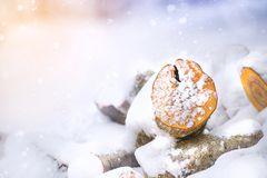 Wooden logs in winter snow. Copy space royalty free stock photo