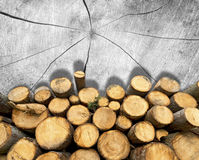 Wooden Logs on Wooden Background Stock Images
