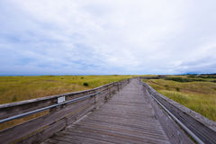 Wooden Long Sidewalk For Vacationers Traveling Along Coast Of Oc Royalty Free Stock Photography