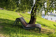 Wooden loungers under a shady tree in the park Royalty Free Stock Image