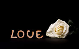 Wooden love text and white rose isolated on black Royalty Free Stock Image