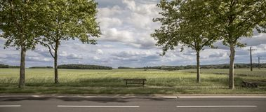 Wooden bench. Panoramic country lanscape. The wooden low bench by the roadside in spring Stock Photos