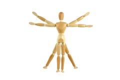 Wooden manikin Vitruvian Man stock images