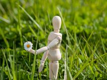 Wooden mannequin with a flower on his hand on springtime Romanticism and love concept. Wooden mannequin with a flower on his hand on springtime Romanticism Stock Photo