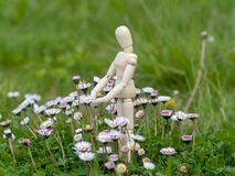 Wooden mannequin between flowers on spring time Ecology and garden concept. Wooden mannequin between flowers on spring time Ecology concept Stock Photography