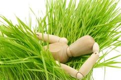 A wooden mannequin on green grass Stock Photos