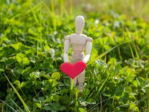 Wooden mannequin with a red heart on his hands in the grass. Concept of romanticism and love. Wooden mannequin with a red heart on its hands. Concept of Royalty Free Stock Photo