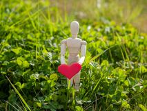 Wooden mannequin with a red heart on his hands in the grass. Concept of romanticism and love. Wooden mannequin with a red heart on its hands. Concept of Stock Photo