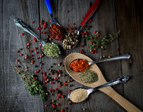 Wooden and metal spoons with spices Stock Photography