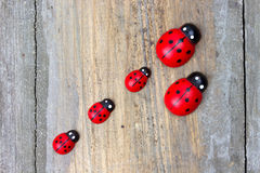 Wooden minature ladybirds Stock Photography