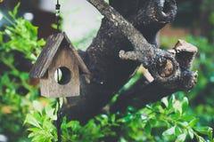 Wooden miniature bird house on green tree - vintage tone Stock Image