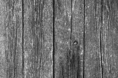 Wooden Monochrome Background Royalty Free Stock Image