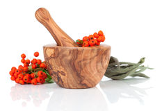 Wooden mortar with Ashberry Royalty Free Stock Photography