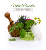 Wooden mortar and cosmetic cream Stock Images