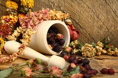 Wooden mortar, dog rose and dried flowers. Still-life with mortar, rose hips and dried flowers Stock Photo