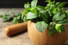 Wooden mortar with fresh green mint on table, closeup. Space for text royalty free stock images