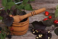 Wooden mortar with spicy herbs and berries Royalty Free Stock Photo