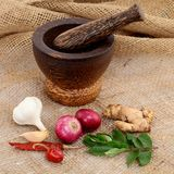 Wooden mortar with various spices Royalty Free Stock Images