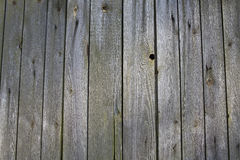 Wooden mossy fence. Wooden mossy fence with rusty nails, wall texture, wood background Stock Photo