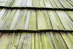 Wooden mossy shingle background Stock Images