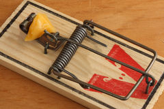 Wooden Mouse Trap. With Cheese as Bait - Trap is Set royalty free stock photography
