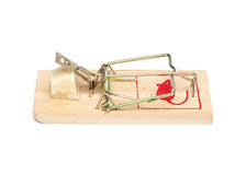 Mouse Trap on White Background Stock Image