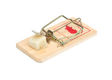 Mouse Trap on White Background Royalty Free Stock Photos