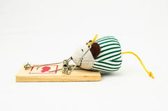 Wooden Mouse Trap Stock Images