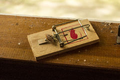 Wooden mousetrap. Classical mousetrap with old bread royalty free stock photos
