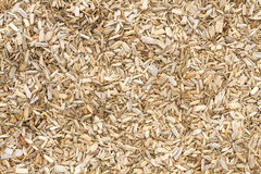 Wooden mulch on the ground in a garden Royalty Free Stock Image