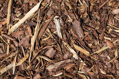Wooden mulch Stock Photography