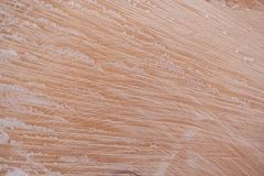 Wooden texture. Close-up fiber of freshly sawn wood covered with Stock Photography