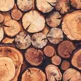 Wooden natural sawn logs closeup for background or abstraction, top view, fashion flat lay royalty free stock photo