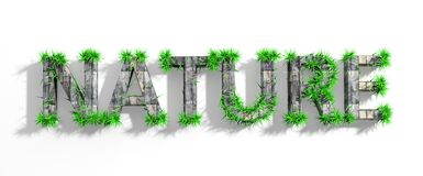 Wooden Nature word with green grass Stock Photo