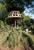 Wooden nest of birds Stock Image