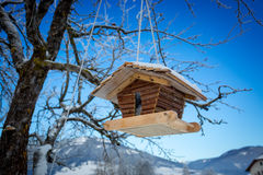 Wooden nesting box hanging on tree branch Stock Image