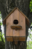 Wooden nesting box on a tree Stock Images