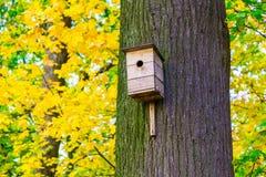 Wooden Nesting Box on Tree Trunk Royalty Free Stock Photo