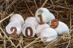 Wooden number 2019 on eggshell Royalty Free Stock Photo