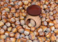 Wooden nutcracker between fresh hazelnuts Royalty Free Stock Photo