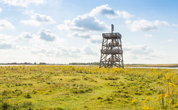 Wooden observation tower in a large nature reserve Royalty Free Stock Image