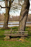 Wooden old bench in the park Stock Images