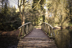 Wooden old bridge over the lake Royalty Free Stock Photography