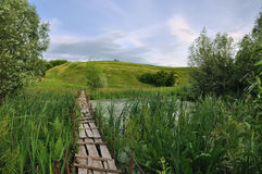 Wooden old bridge through the reeds Stock Photo