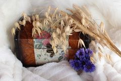 Wooden old chest with painting with a bouquet of dry cereals and blue flowers on a white background stock photos
