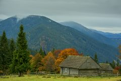 Wooden old simple houses on a clearing among yellow trees and green mountains. Stock Photos