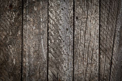 Wooden old surface Stock Photography